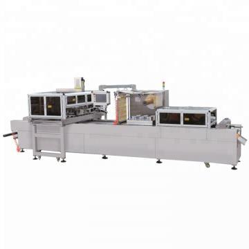 Type L Seal Stand Single Vacuum Sealing Packing Packaging Machine for Meat Food (AV-800)
