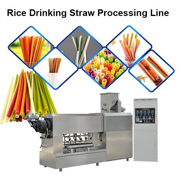 Full Automatic Eco-Friendly Edible Pasta Drinking Straw Making Machine / Disposable Straw Machine