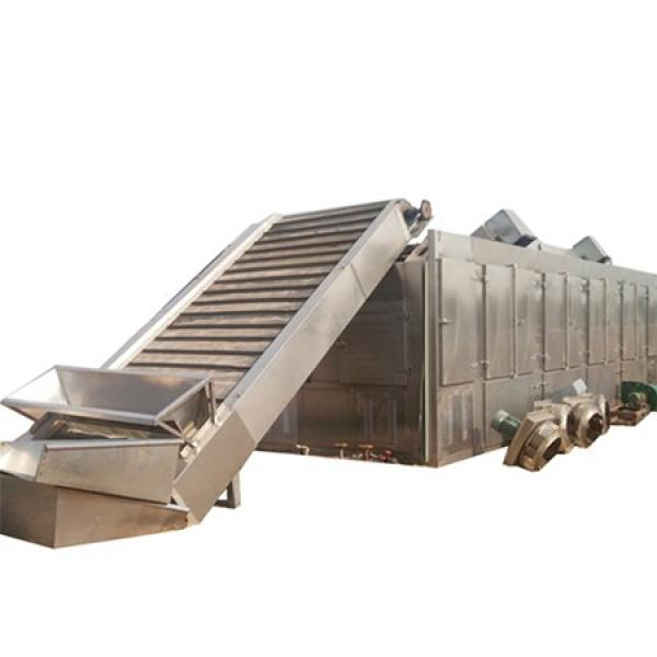 Steam Heating Single Layer Tunnel Dryer/ Belt Dryer