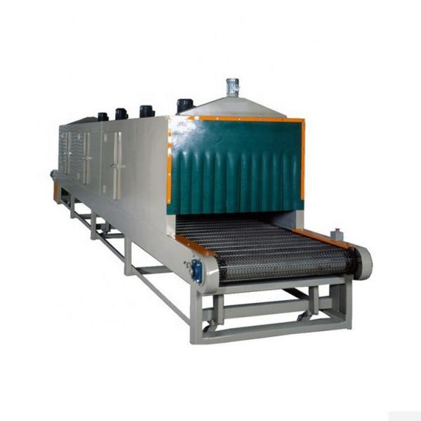 Dw Mesh-Belt Dryer Machine for Cucumber