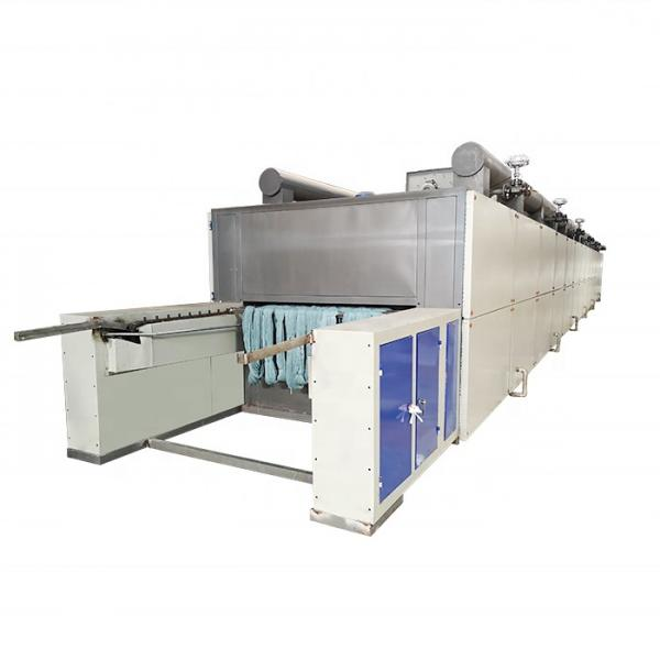 Industrial Hemp Hot Air Continuous Belt Fruit Dryer Vegetable Drying Machine