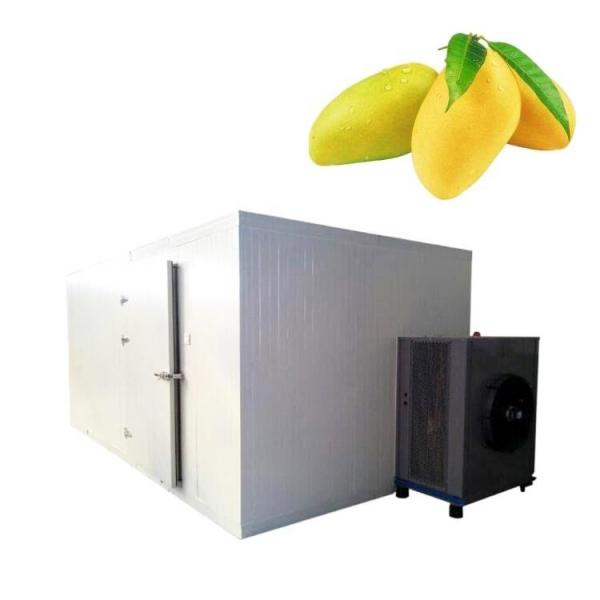 Industrial Fruit Drying Cassava Vegetable Food Meat Processing Vacuum Freeze Dryer Machine